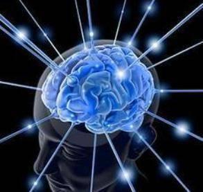 Internet parece estar alterando nuestra estructura cerebral