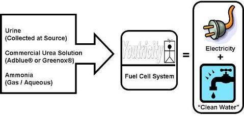 Crean energía renovable en base a la orina humana y animal