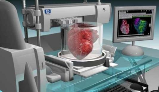 Imprimir un órgano real; la última novedad en Medicina Regenerativa