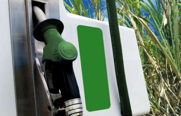 Sensor genético logra aumentar la producción de biocombustibles