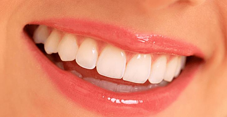 Las células adultas se transforman en células madre al interior de los dientes