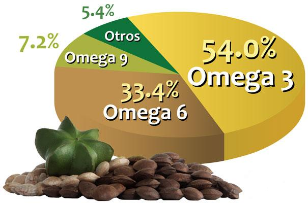 El Sacha Inchi reduce el colesterol, triglicéridos e índice de masa