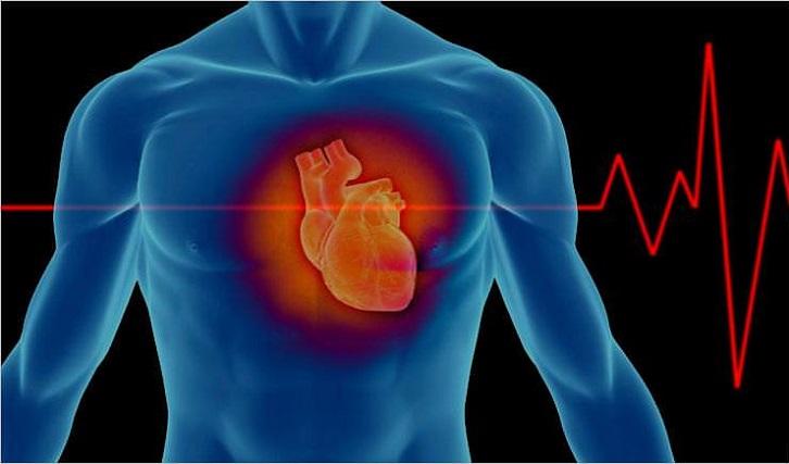 Científicos utilizarían células madre como tratamiento de recuperación luego de un ataque cardíaco